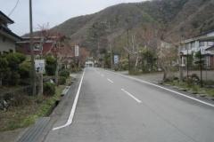 Лес Аокигахара4