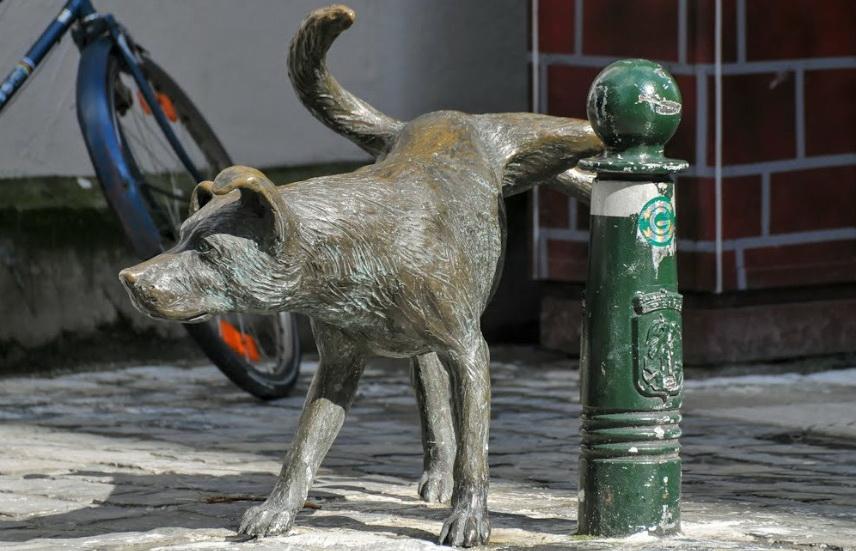 Писающая собака.